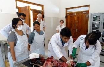 WHHNP Training on Wildlife Necropsies for Veterinary Officers